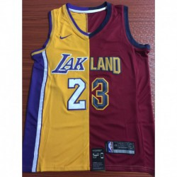Men NBA Los Angeles Lakers 23 LeBron James Red Yellow Jersey-201