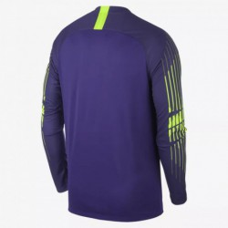 2018-2019 tottenham hotspur purple goalkeeper long sleeve soccer jerse