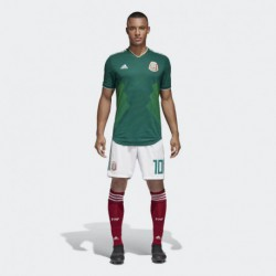 Mexico 2018 world cup home suit