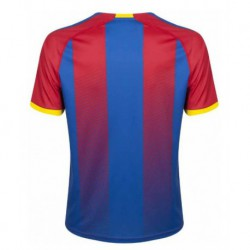 Crystal palace home soccer jersey 2018-201
