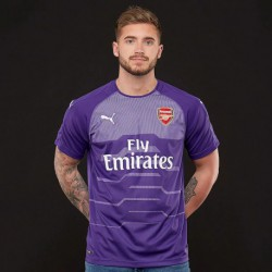 2018-2019 arsenal purple goalkeeper soccer jerse
