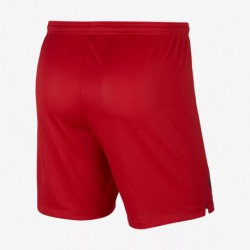 Paris jordan ucl red shorts 201