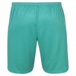 Nike tottenham hotspur third away shorts 201